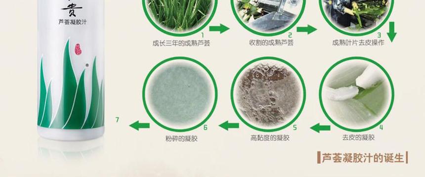 昭贵芦荟——昭贵芦荟凝胶汁的制作